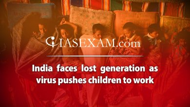Photo of India Faces Lost Generation As Virus Pushes Children From School To Work